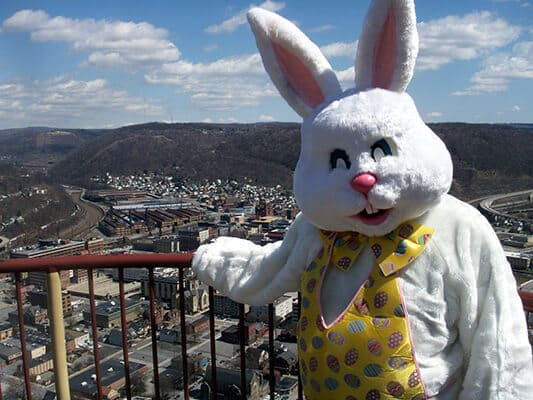 Easter Bunny at the inclined plane